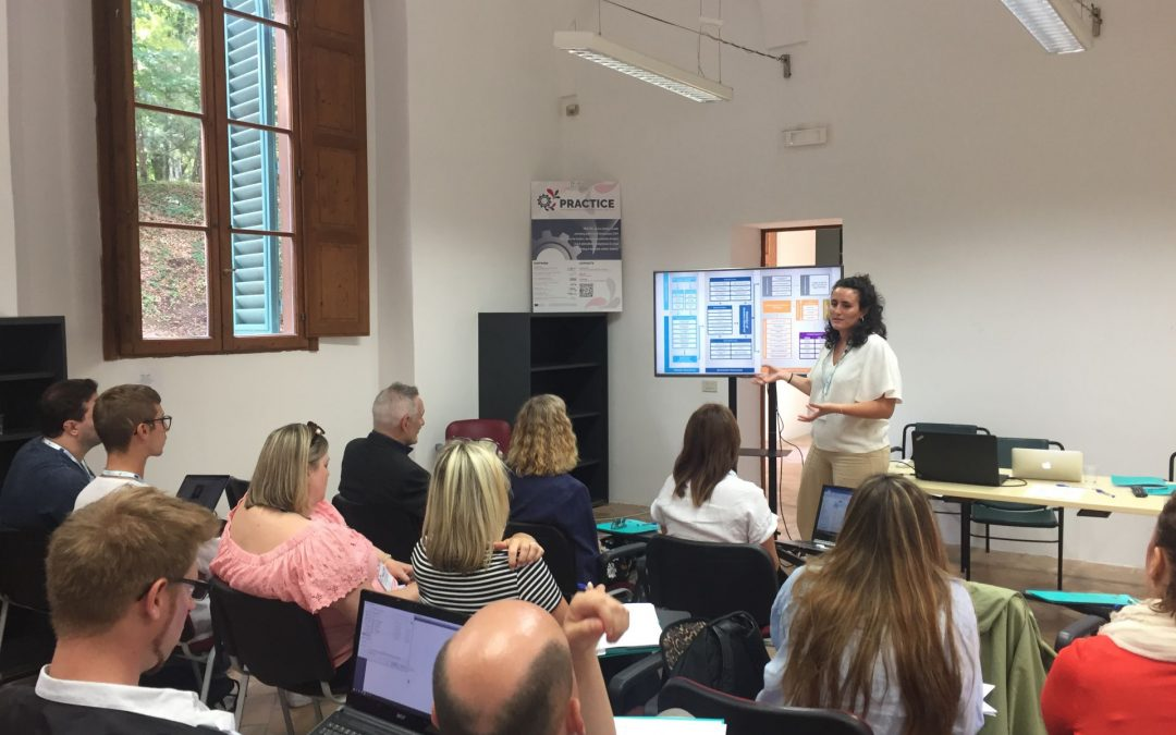 PRACTICE: experts' summer school in preparation to the training seminars for teachers